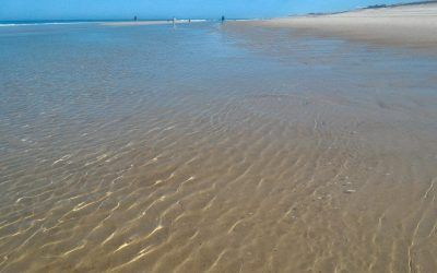 Kilométricas playas en las Landas