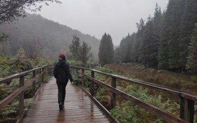 Parque Natural de Gorbea (desde Murgia)