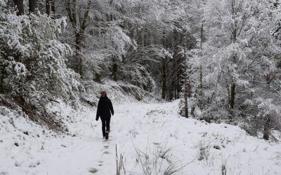 Encantos del Pirineo navarro